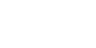 lion chiptuning files